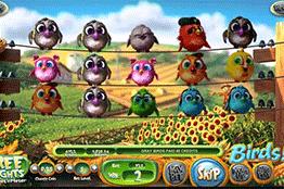 Birds tragamonedas